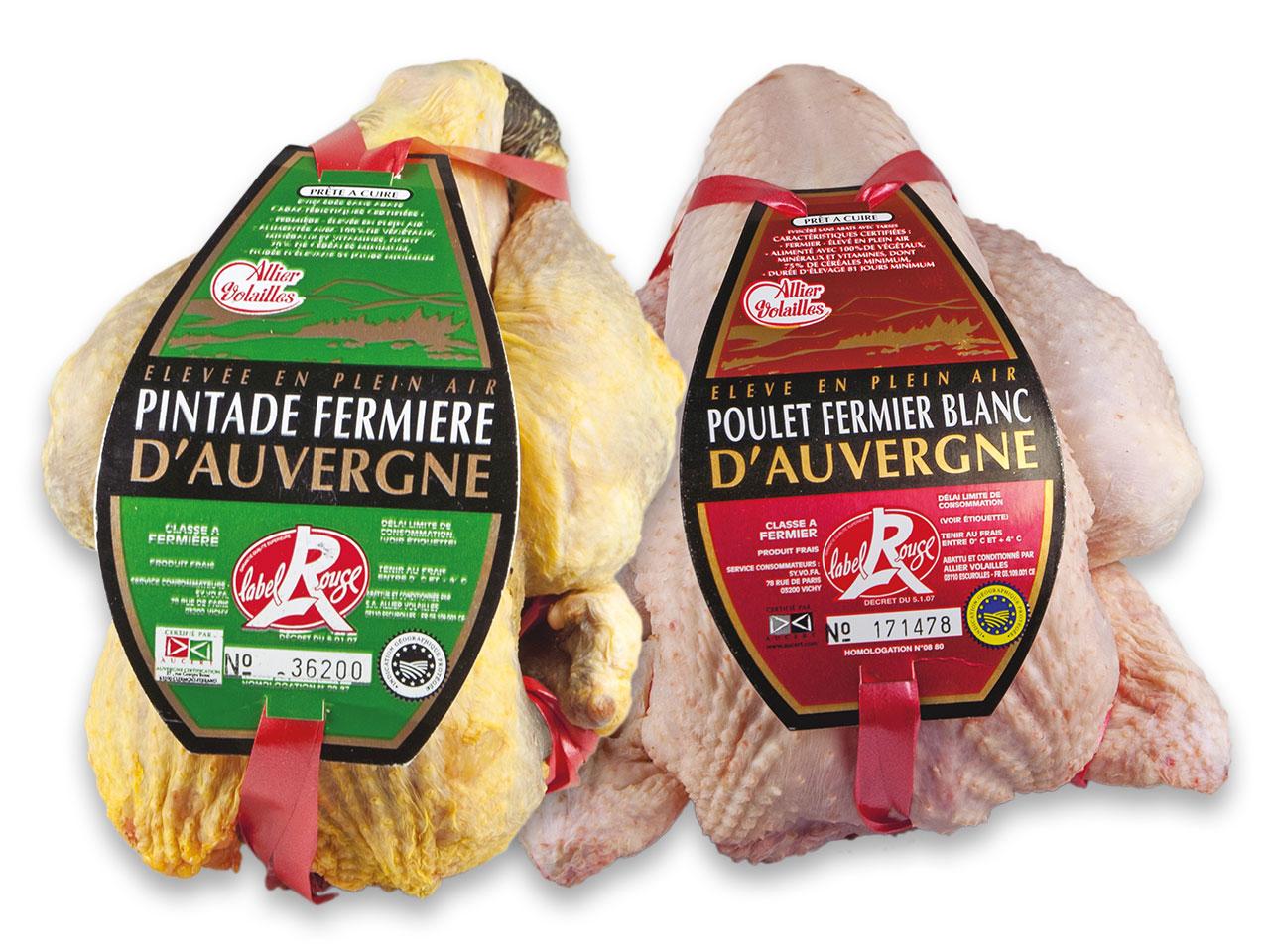 Pintade fermière d'Auvergne et poulet fermier d'Auvergne