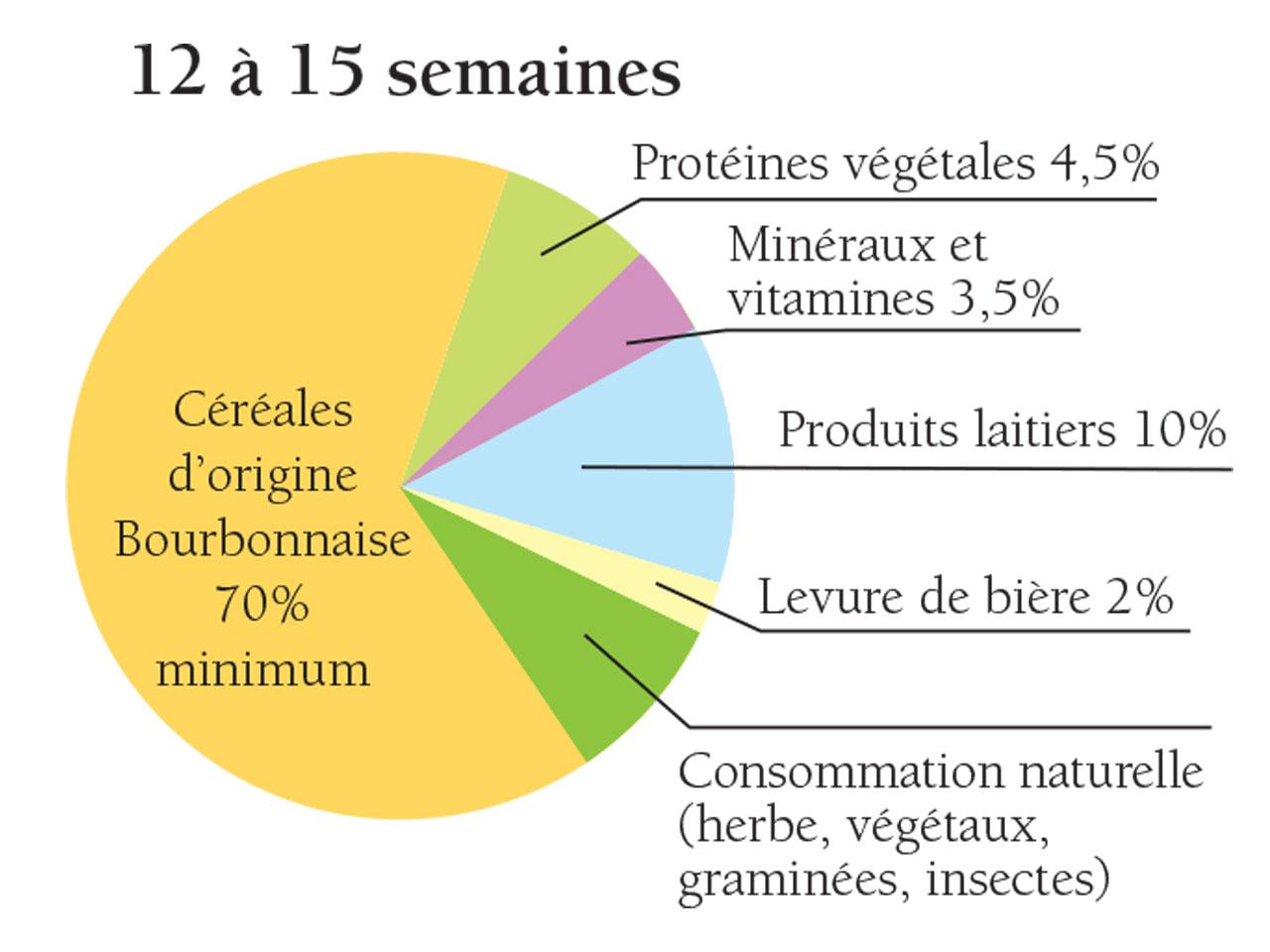 élevage du poulet du Bourbonnais de la 12ème à la 15ème semaine